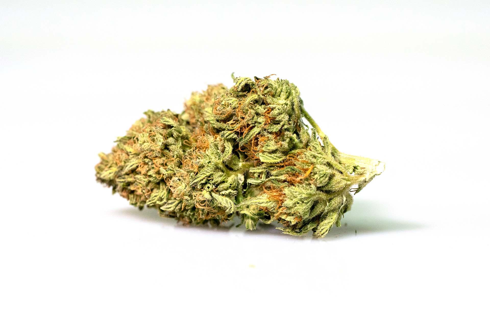 pot zero strain durbana