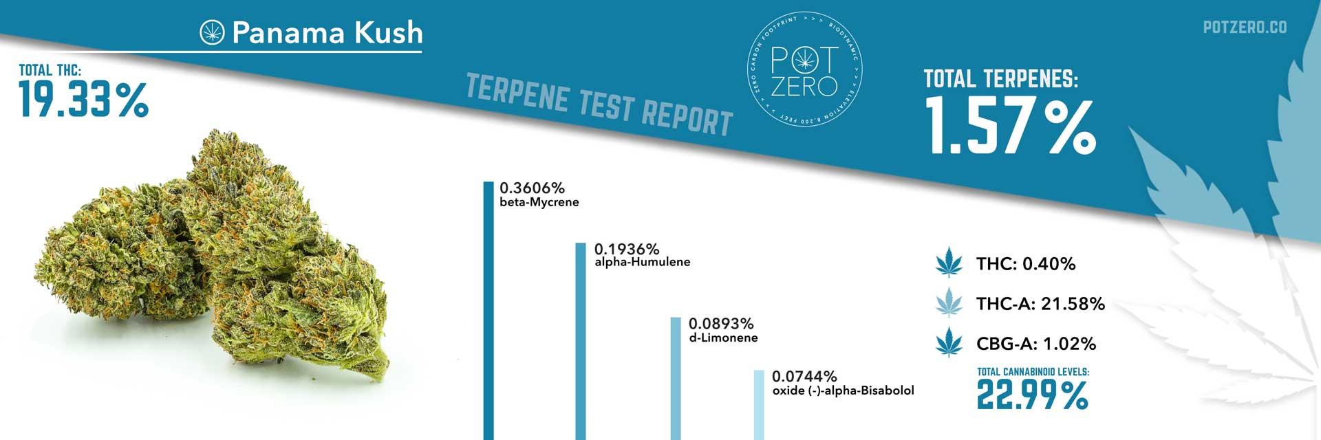 panama kush strain terpene test report